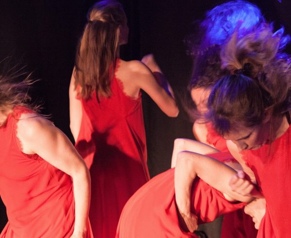 tolle Workshops in Tanzpädagogik, Ballett und Modern Dance